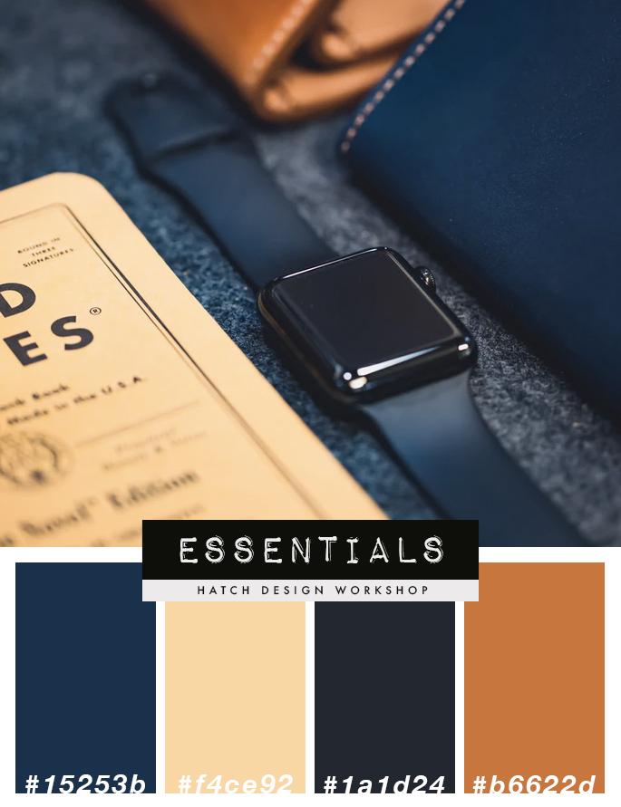 Luxury Masculine Navy Blue Brown Tan Color Palette Scheme